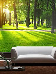 Árvores/Folhas / 3D Papel de Parede Para Casa Contemporâneo Revestimento de paredes , Tela Material adesivo necessário Mural , quarto