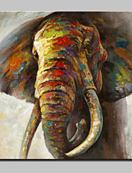 Large Hand Painted Colorful Elephant Animal Oil Paintings On Canvas Modern Abstract Wall Art Picture For Living Room Home Decoration Ready To Hang