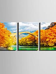 cheap -E-HOME Stretched Canvas Art Golden Stone Bridge Decoration Painting Set Of 3