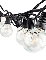 String Lights AC110 7.6m 0 leds Warm White
