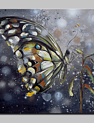 cheap -Hand-Painted Butterfly Animal Oil Painting On Canvas Modern Abstract Wall Art Pictures For Home Decoration Ready To Hang