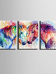 cheap -E-HOME Stretched Canvas Art Two Colored Horses Decoration Painting Set Of 3