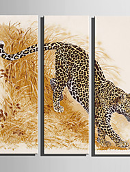 E-HOME Stretched Canvas Art The Grass Leopard Decoration Painting Set Of 3