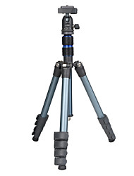 NEST Alloy aluminum 300mm folded length 5 sections camera tripod NT-235K