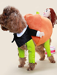 cheap -Cat Dog Costume Dog Clothes Classic Cute Cosplay Casual/Daily Fashion Cartoon Rainbow Costume For Pets