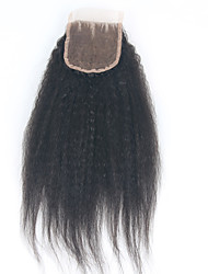 Недорогие -ELVA HAIR Бразильские волосы 3.5x4 Закрытие Классика / Естественные прямые Бесплатный Часть / Средняя часть / 3 Часть Швейцарское кружево Натуральные волосы Повседневные