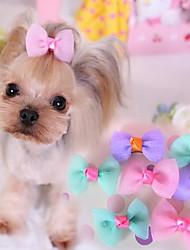 Собака Аксессуары для шерсти Одежда для собак Очаровательный На каждый день Бант Лиловый Синий Розовый