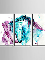 E-HOME Stretched Canvas Art Snuggle Horses Decoration Painting Set Of 3