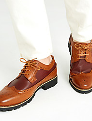 Herren Schuhe Leder Frühling Sommer Herbst Winter Komfort Bullock Schuhe Outdoor Schnürsenkel Für Normal Schwarz Braun Gelb