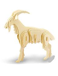 Недорогие -3D пазлы Пазлы Деревянные игрушки Динозавр Летательный аппарат Овечья шерсть Своими руками деревянный Классика Детские Универсальные Игрушки Подарок