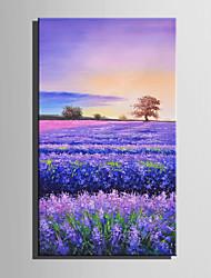 preiswerte -Handgemalte Blumenmuster/Botanisch Vertikal,Retro Ein Panel Leinwand Hang-Ölgemälde For Haus Dekoration