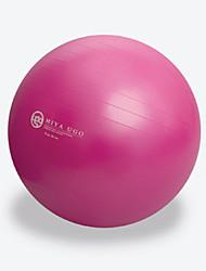 billige -21.5 tommer (ca. 55cm) Træningsbold Fitness bold Eksplosionssikker Yoga Træning Balance