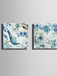 E-HOME Stretched Canvas Art Simple Flowers And Birds Series 1 Decoration Painting Set Of 2