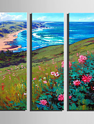 cheap -Mini Size E-HOME Oil painting Modern Coastal Scenery Pure Hand Draw Frameless Decorative Painting Set of 3