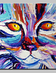 cheap -Large Size Hand Painted Cat Face Oil Painting On Canvas Modern Abstract Wall Art Pictures For Wall Decor No Frame