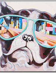 um buldogue vestindo óculos decoração de parede pintados a mão pinturas a óleo contemporâneos arte moderna