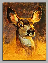 cheap -Hand-Painted Animal Vertical,Artistic Nature Inspired Birthday Modern/Contemporary Office One Panel Oil Painting