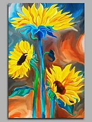 economico -speranza di girasole decorazione della parete dipinti a mano dipinti ad olio contemporanei opere d'arte moderna arte della parete