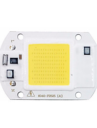 abordables -1pc COB 220-240 V Luminoso Chip LED para DIY Proyector de luz de inundación LED 20 W