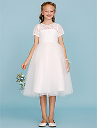 cheap -Ball Gown Knee Length Flower Girl Dress - Lace Tulle Sleeveless Crew Neck with Pleats by LAN TING BRIDE®