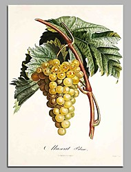 cheap -Vitis Hand Painted Contemporary Oil Paintings Modern Artwork Wall Art for Room Decoration