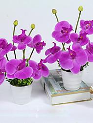 Недорогие -1 Филиал Пенопласт Пластик Орхидеи Букеты на стол Искусственные Цветы