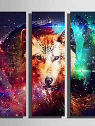 cheap -E-HOME® Stretched LED Canvas Print Art  The Wolf Flash Effect LED Flashing Optical Fiber Print Set of 3