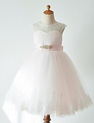cheap -Ball Gown Knee Length Flower Girl Dress - Lace Tulle Sleeveless Jewel Neck with Belt by Thstylee