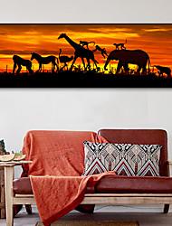 baratos -Animais Ilustração Arte de Parede, Plástico Material com frame For Decoração para casa Arte Emoldurada Sala de Estar