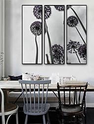 abordables -A fleurs/Botanique Botanique Illustration Art mural, Plastique Matériel Avec Cadre For Décoration d'intérieur Cadre Art Salle de séjour