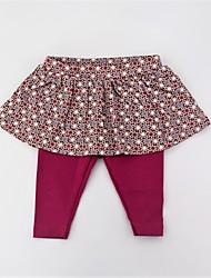 cheap -Girls' Daily Polka Dot Color Block Pants, Cotton Spring Summer Cute Active Fuchsia