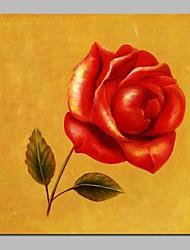 abordables -Peinture à l'huile Hang-peint Peint à la main - Abstrait A fleurs / Botanique Rétro Toile