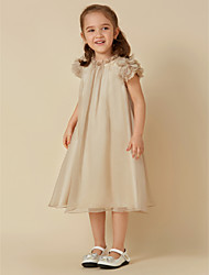cheap -Sheath / Column Knee Length Flower Girl Dress - Chiffon Short Sleeves Scoop Neck with Pleats by LAN TING BRIDE®