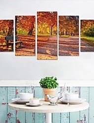 economico -Adesivi decorativi da parete - Adesivi aereo da parete / Adesivi 3D da parete Paesaggi / Floreale / Botanical Salotto / Camera da letto