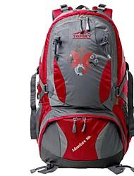 preiswerte -38 L Rucksack - tragbar, Atmungsaktivität Außen Wandern, Camping, Reise Oxford Tuch, Nylon Fuchsia, Dunkelgrün