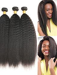Недорогие -3 Связки Бразильские волосы Естественные прямые Натуральные волосы Накладки из натуральных волос 8-28 дюймовый Ткет человеческих волос Мягкость / Лучшее качество / Новое поступление