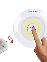 Недорогие -брелонг пульт дистанционного управления двухступенчатый димминг светодиодный шкаф погладить ночной свет 3 шт.