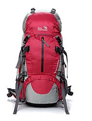 Недорогие -OSEAGLE 50 L Рюкзаки / Заплечный рюкзак - Водонепроницаемость, Дожденепроницаемый, Пригодно для носки На открытом воздухе Отдых и Туризм, Восхождение Сетка, Нейлон Красный, Синий, Светло-Зеленый