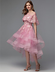 cheap -A-Line Illusion Neck Asymmetrical Lace / Tulle High Low Cocktail Party / Prom Dress with Lace Insert by TS Couture®