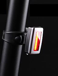 Недорогие -Лампа Задняя подсветка на велосипед - Велосипедные фары LED Горные велосипеды Велоспорт Портативные Прочный Литий-ионная аккумуляторная батарея 200 lm Встроенная литий-батарея Красный / АБС-пластик
