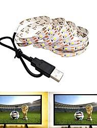 Недорогие -2м Гибкие светодиодные ленты 120 светодиоды SMD2835 Тёплый белый / Холодный белый USB / Для вечеринок / Декоративная Работает от USB 1шт