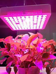 billige -1pc 600 W 3800 lm 100 LED perler Voksende lysarmatur 220-240 V