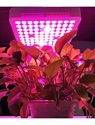 billige -1pc 300 W 2200 lm 100 LED perler Panellys Voksende lysarmatur RGB + Hvit 110-120 V