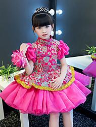 Недорогие -Детские Девочки В китайском стиле Оса-Waisted Cheongsam Назначение Помолвка Девичник Шелк Вышивка Выше колена Платье