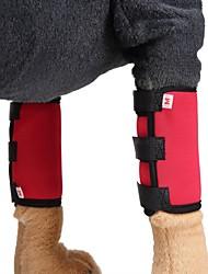 olcso -Kutyák Egészségügy Láb ékezetek Kutyaruházat Egyszínű Piros Kék Fekete Anyag Jelmez Kompatibilitás Corgi Beagle Bulldog Tavasz, Ősz, Tél, Nyár Uniszex Sportos és szabadidős