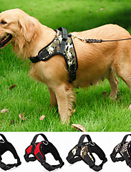 Köpek Giyim ve Aksesuarları