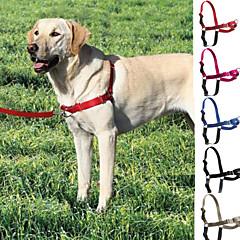 Câine Hamuri Lese Alunecare Ajustabile / Retractabil Teak Nailon Negru Gri Trandafiriu Rosu Albastru