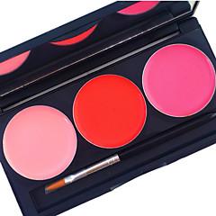 profesyonel 3 renk dudak parlatma seti 24 saat süren mat su geçirmez kapsama ovmayacak sıvı ruj kozmetik paleti
