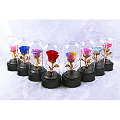 cheap Party Accessories-Wedding Party Favors & Gifts - Gifts Floral Dried Flower Romance