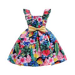 baratos Roupas de Meninas-Menina de Vestido Diário Para Noite Floral Primavera Verão Algodão Poliéster Sem Manga Fofo Activo Arco-íris